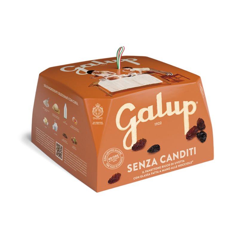GALUP - Panettone senza Canditi...